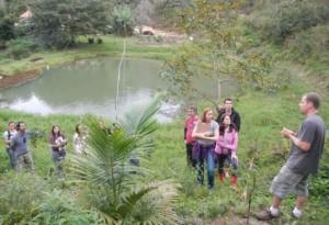 """Arthur Nanni apresentando do Sistema Agroflorestal (SAF) """"de carona"""" implanto na Zona 3 do sítio Igatu em São Pedro de Alcântara."""
