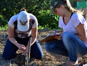 Levantamento de características dos solos em uma das propriedades rurais avaliadas.